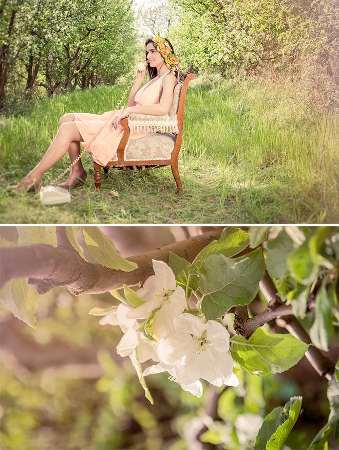 harufoto_fashion_rose_14