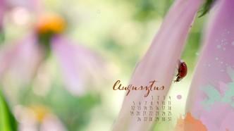 naptár 2013 augusztus