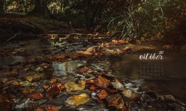 őszi háttérkép Haru Fotó